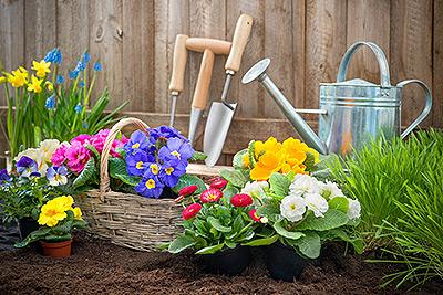 Gartenpflege in Panketal und Umgebung